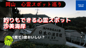 釣りと肝試し両方できる日本で初めての海水浴場 岡山 沙美海岸